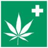 エビデンスのある 医療大麻・CBDが効果的な病気・症状